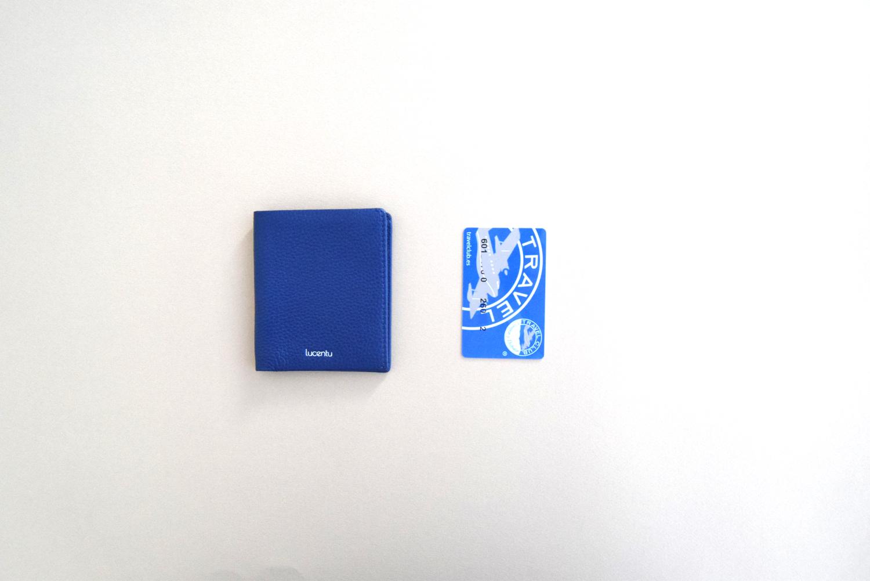 Cartera Lucentu Blue Xabia con tarjeta de crédito
